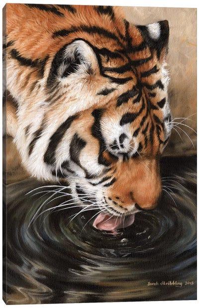 Siberian Tiger II Canvas Art Print
