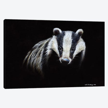 Badger Canvas Print #SAS8} by Sarah Stribbling Art Print