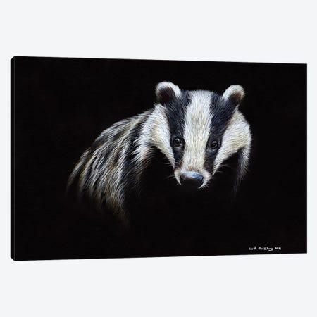 Badger Canvas Print #SAS8} by Sarah Stribbling Art Print