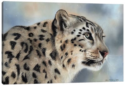 Snow Leopard IV Canvas Art Print