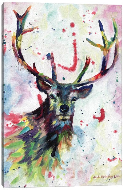 Stag dream Canvas Art Print