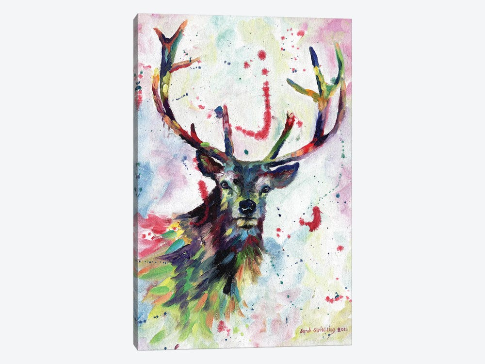 Stag dream by Sarah Stribbling 1-piece Canvas Art