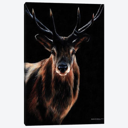 Stag 3-Piece Canvas #SAS95} by Sarah Stribbling Canvas Art Print