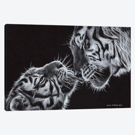 Tiger And Cub Canvas Print #SAS97} by Sarah Stribbling Canvas Art Print