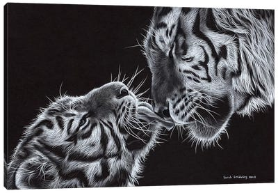 Tiger And Cub Canvas Art Print