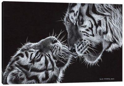 Tiger And Cub Canvas Art Print