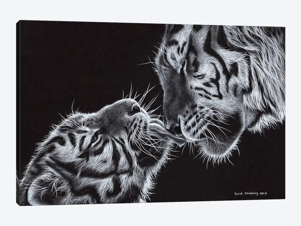Tiger And Cub by Sarah Stribbling 1-piece Art Print