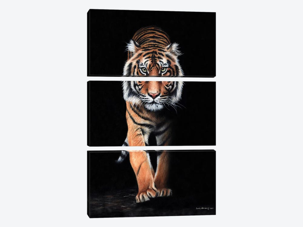 Tiger Black by Sarah Stribbling 3-piece Canvas Artwork