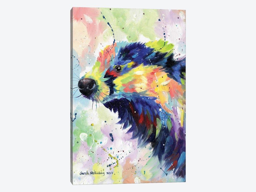 Badger Colour by Sarah Stribbling 1-piece Canvas Artwork