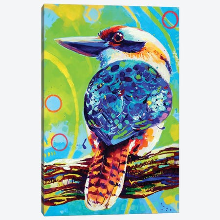 Kookaburra Canvas Print #SAT21} by Sandra Trubin Canvas Art