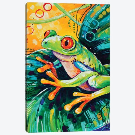 Red Eyed Tree Frog Canvas Print #SAT28} by Sandra Trubin Canvas Artwork