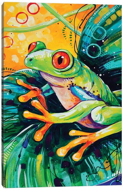 Red Eyed Tree Frog Canvas Art Print