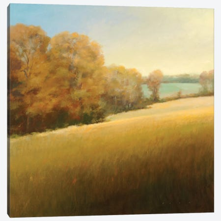 Distant Lake Canvas Print #SBA1} by Stephen Bach Art Print