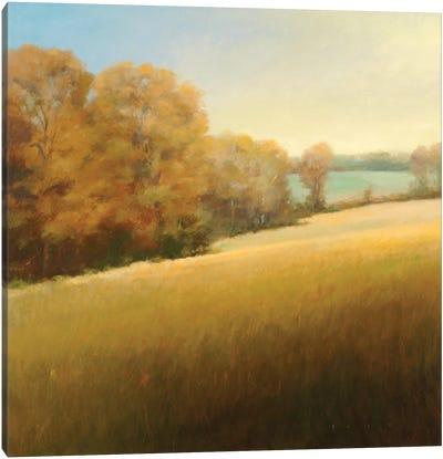 Distant Lake Canvas Art Print