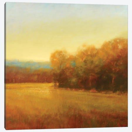 Overcast Canvas Print #SBA2} by Stephen Bach Canvas Print