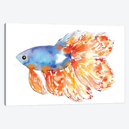 Seacoast Betta Fish Canvas Print #SBE104} by Sara Berrenson Canvas Artwork
