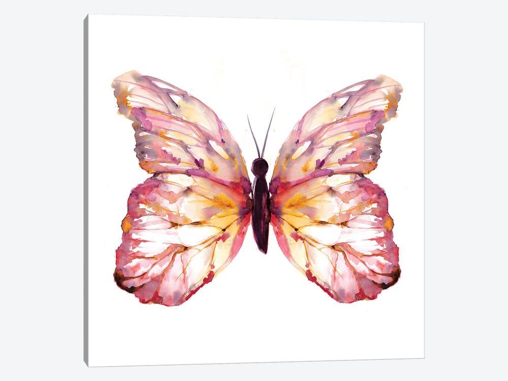 Butterfly Blush by Sara Berrenson 1-piece Canvas Wall Art