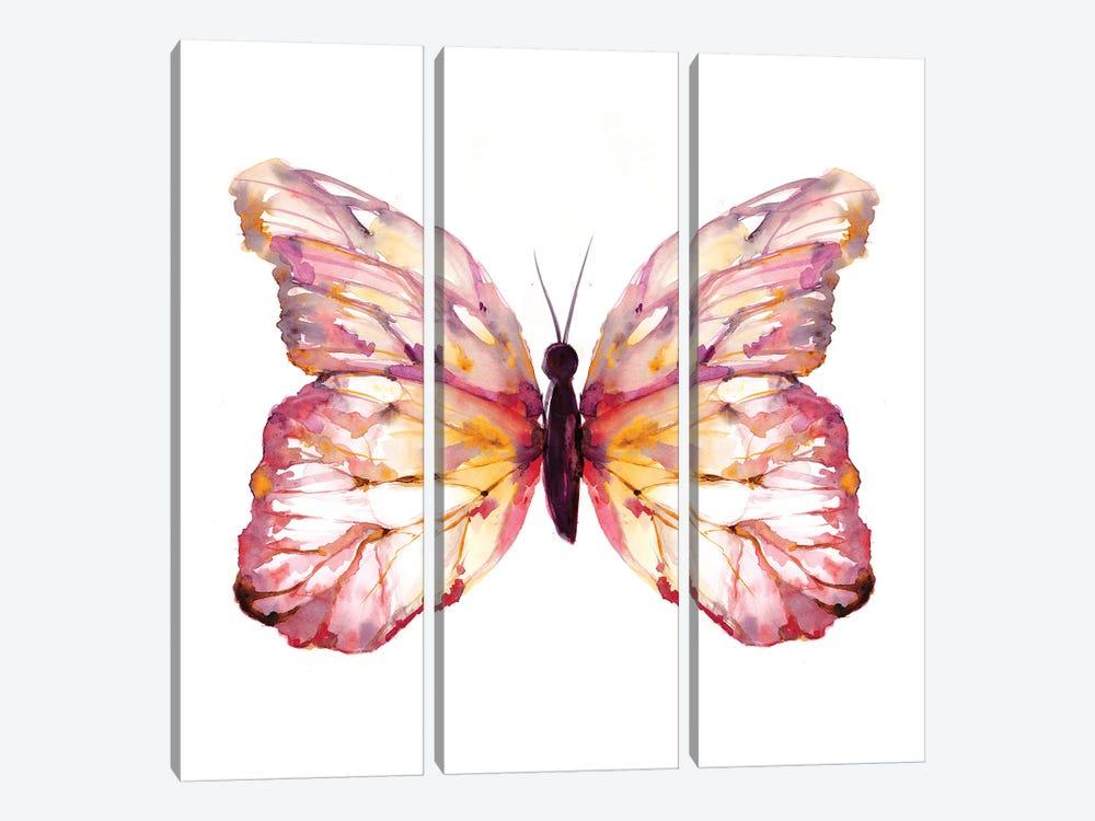Butterfly Blush by Sara Berrenson 3-piece Canvas Wall Art