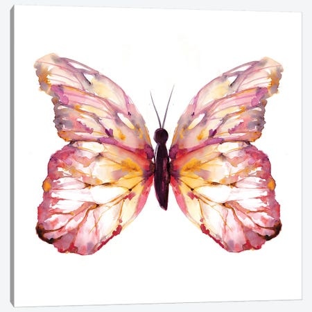 Butterfly Blush Canvas Print #SBE11} by Sara Berrenson Canvas Wall Art