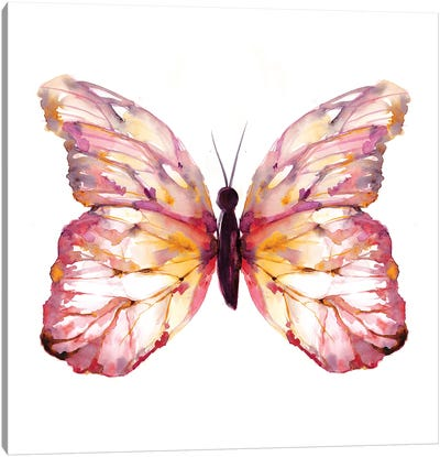 Butterfly Blush Canvas Art Print