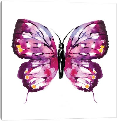 Butterfly Fuchsia Canvas Art Print