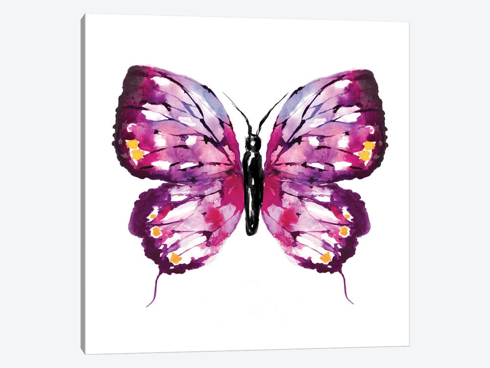 Butterfly Fuchsia by Sara Berrenson 1-piece Canvas Art Print