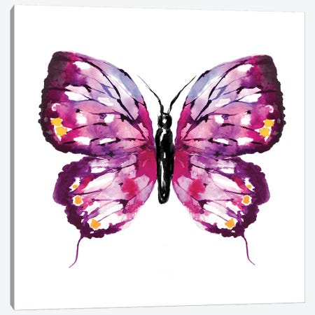Butterfly Fuchsia Canvas Print #SBE12} by Sara Berrenson Canvas Wall Art