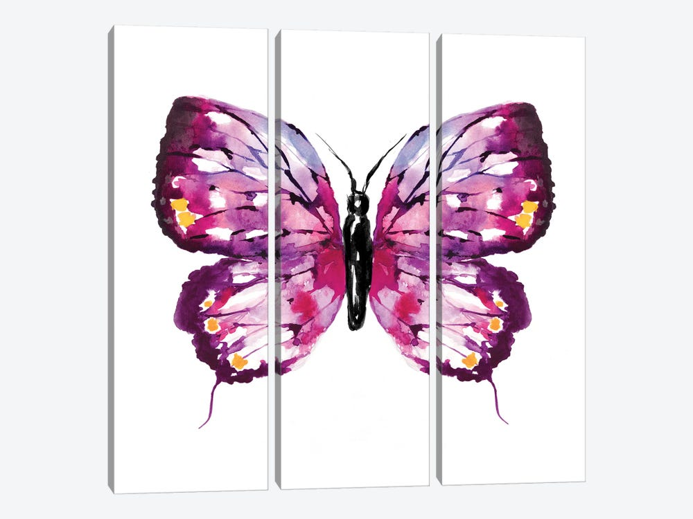 Butterfly Fuchsia by Sara Berrenson 3-piece Canvas Print