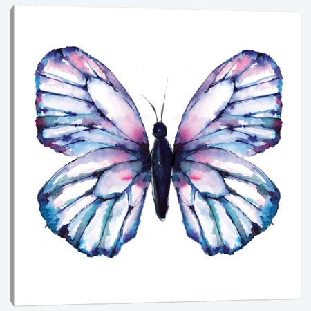 Butterfly Iridescent Canvas Print #SBE13} by Sara Berrenson Canvas Artwork