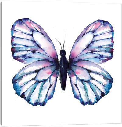 Butterfly Iridescent Canvas Art Print