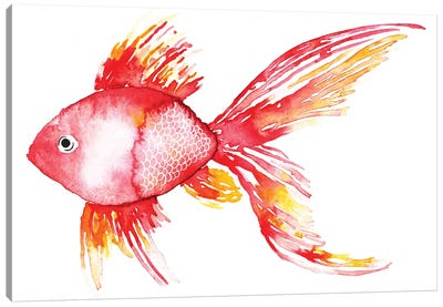 Coral Fish Canvas Art Print