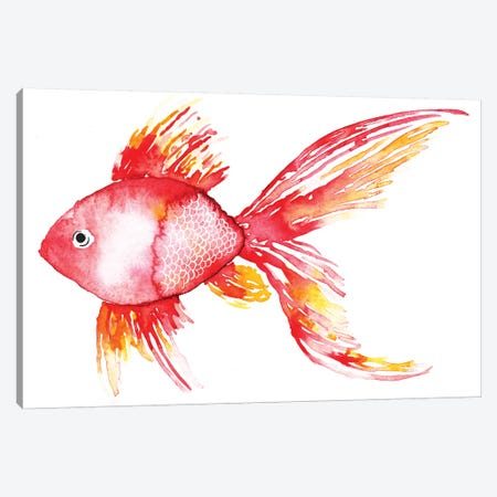 Coral Fish Canvas Print #SBE20} by Sara Berrenson Canvas Art Print