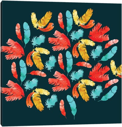 Feathers Dark Canvas Art Print