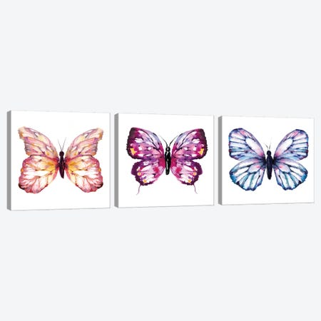 Butterfly Triptych Canvas Print Set #SBE3HSET001} by Sara Berrenson Canvas Art Print