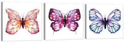 Butterfly Triptych Canvas Art Print