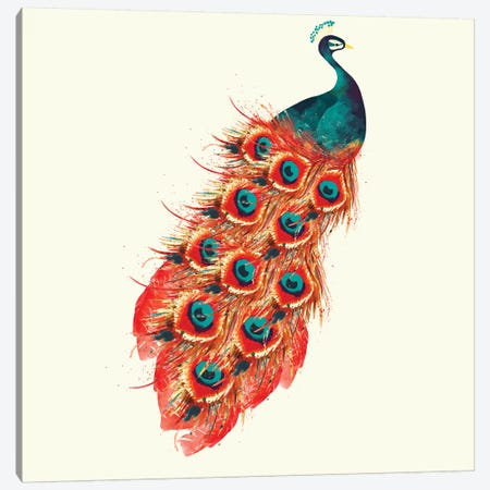 Peacock Canvas Print #SBE45} by Sara Berrenson Canvas Wall Art