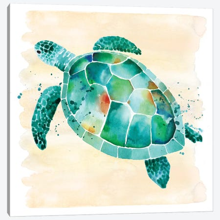 Sea Turtle Canvas Print #SBE63} by Sara Berrenson Art Print