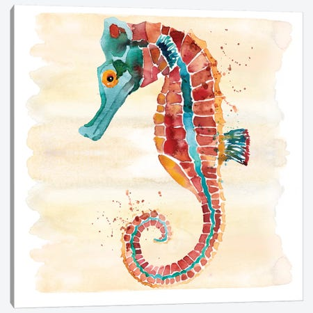 Seahorse Canvas Print #SBE64} by Sara Berrenson Canvas Art