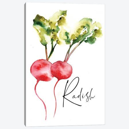 Loose Veggies Radish Canvas Print #SBE94} by Sara Berrenson Canvas Print