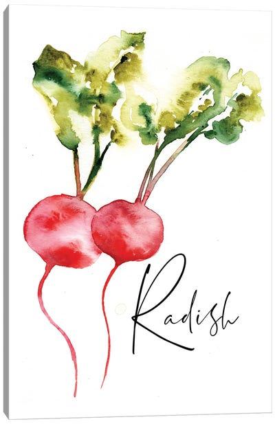 Loose Veggies Radish Canvas Art Print