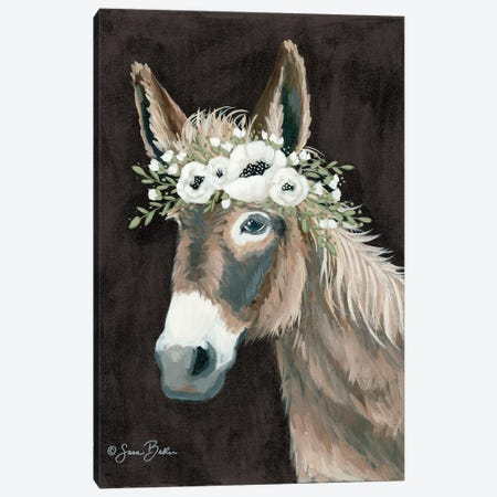 Donkey    3-Piece Canvas #SBK25} by Sara Baker Canvas Art