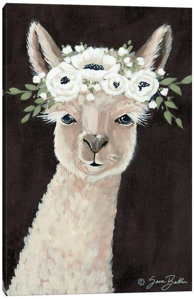 Llama     Canvas Art Print
