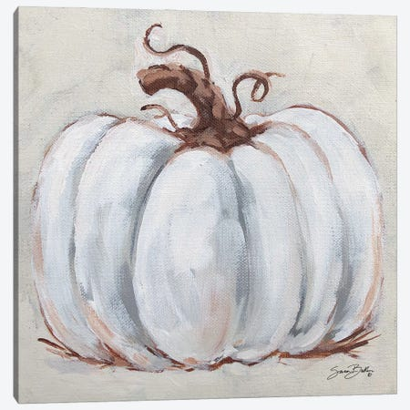 Pumpkin Close Up I Canvas Print #SBK35} by Sara Baker Art Print