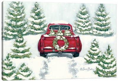Tree Farm Tradition II Canvas Art Print