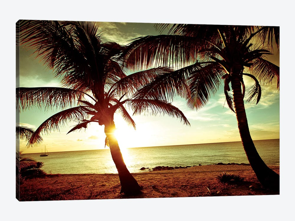Bimini Sunset by Susan Bryant 1-piece Art Print