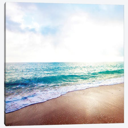 Golden Sands II Canvas Print #SBT29} by Susan Bryant Canvas Art