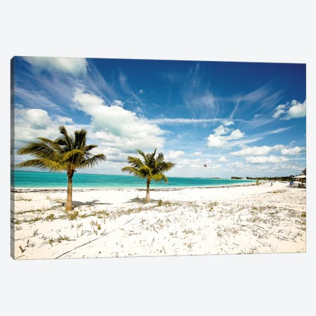 Palms and Kites Canvas Print #SBT31} by Susan Bryant Canvas Art Print
