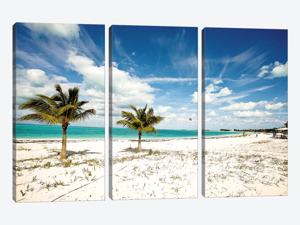 Palms and Kites by Susan Bryant 3-piece Canvas Art