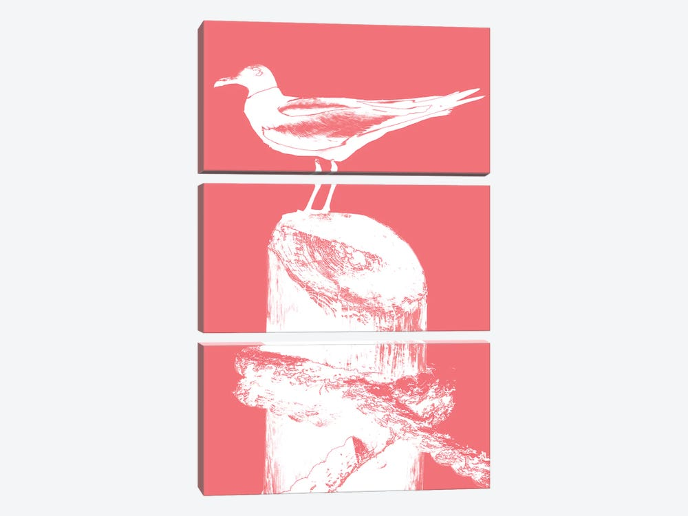 Perching Seabird I by Susan Bryant 3-piece Canvas Art Print