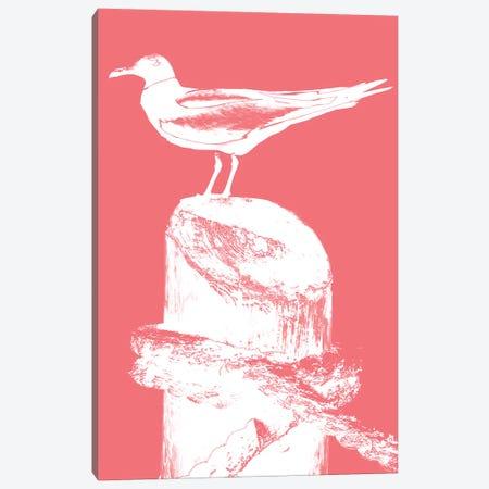 Perching Seabird I Canvas Print #SBT32} by Susan Bryant Canvas Art Print